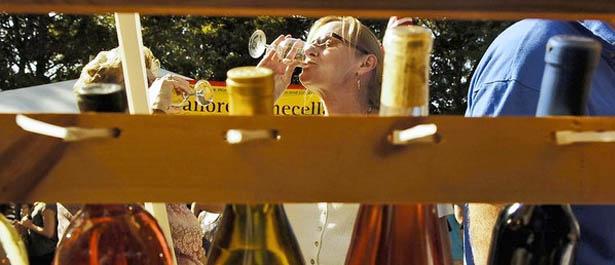 Carroll County Wine Festival 2013